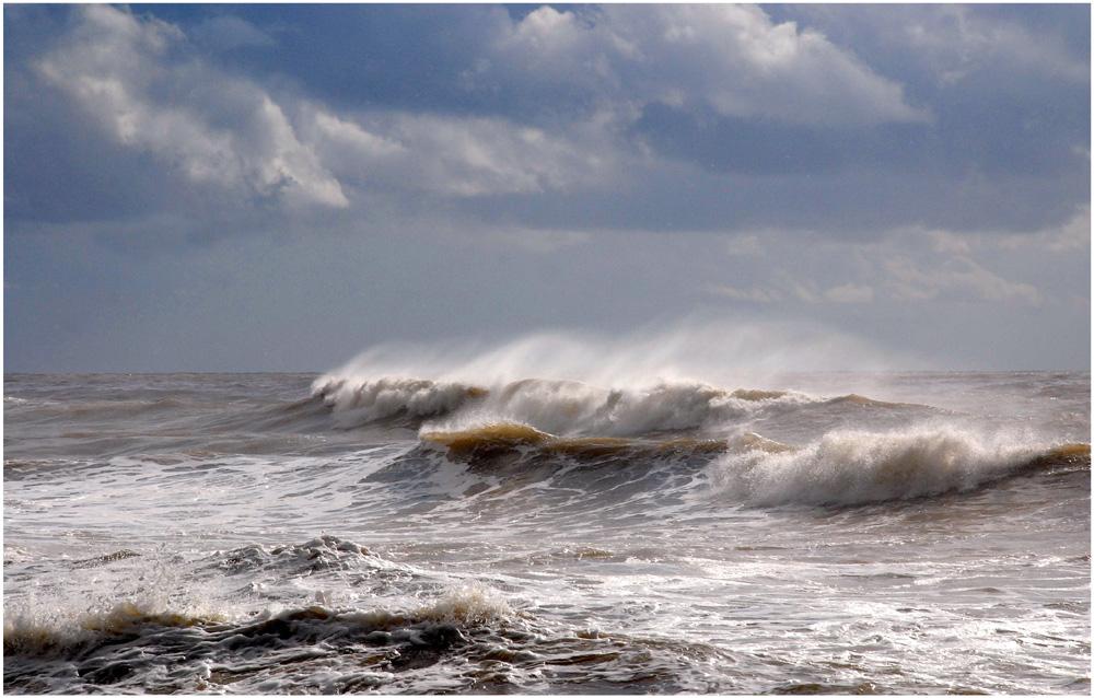 на каких судах можно выходить в белоснежное море